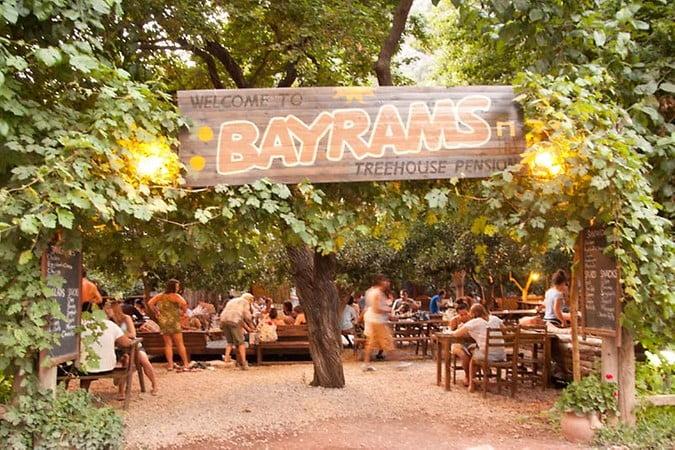 bayrams-tree-house